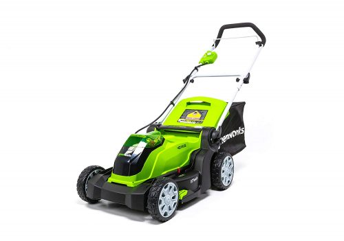 10. Greenworks Gas Lawn Mower